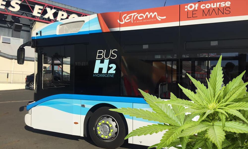 Au Mans, les bus carbureront bientôt à l'hydrogène… et au chanvre