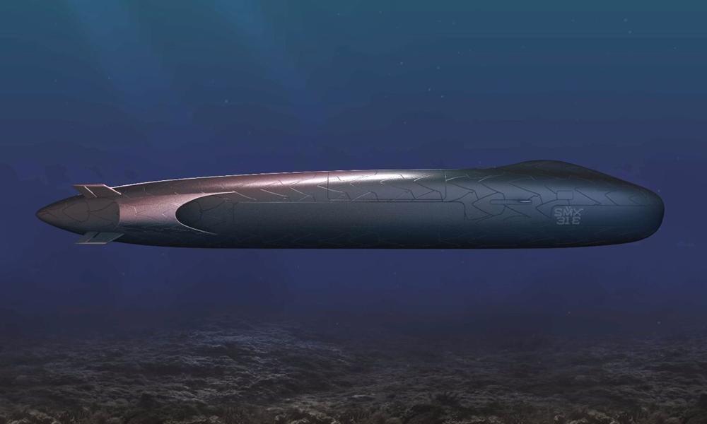 Ce cigare aquatique est un sous-marin 100% électrique