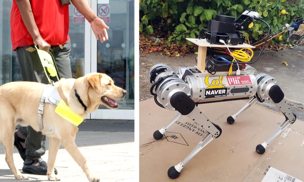 Des scientifiques inventent un chien robot capable de guider les malvoyants