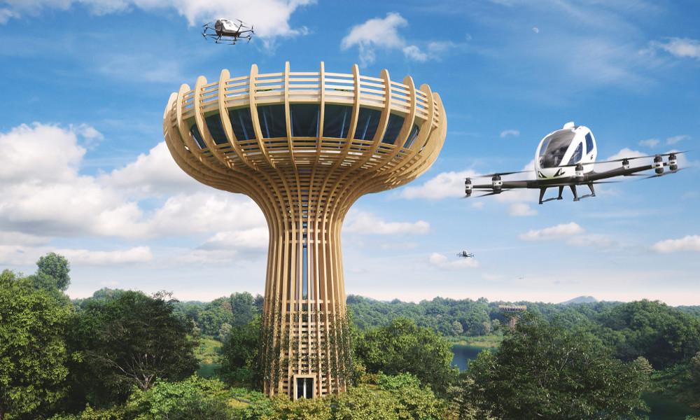 En Italie, les voitures volantes atterriront bientôt dans ce baobab géant