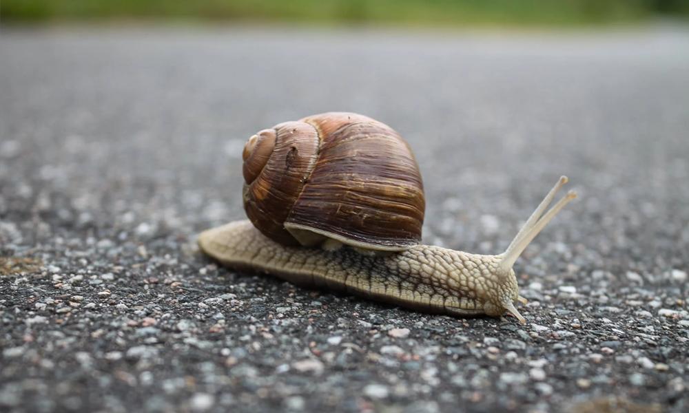 Le saviez-vous ? Rouler trop lentement sur l'autoroute peut… vous coûter cher