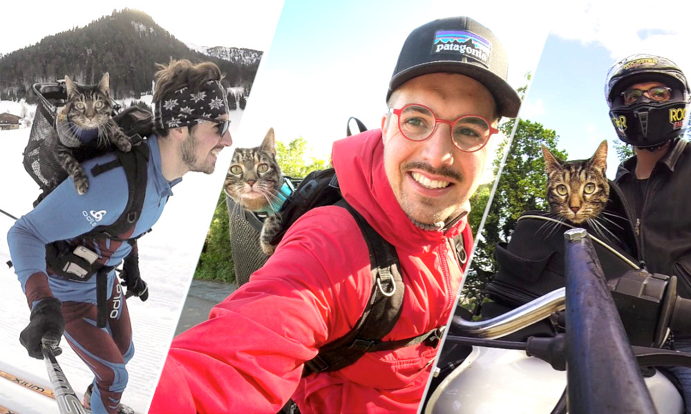 Moto, ski ou roller, cet aventurier emmène son chat vraiment PARTOUT