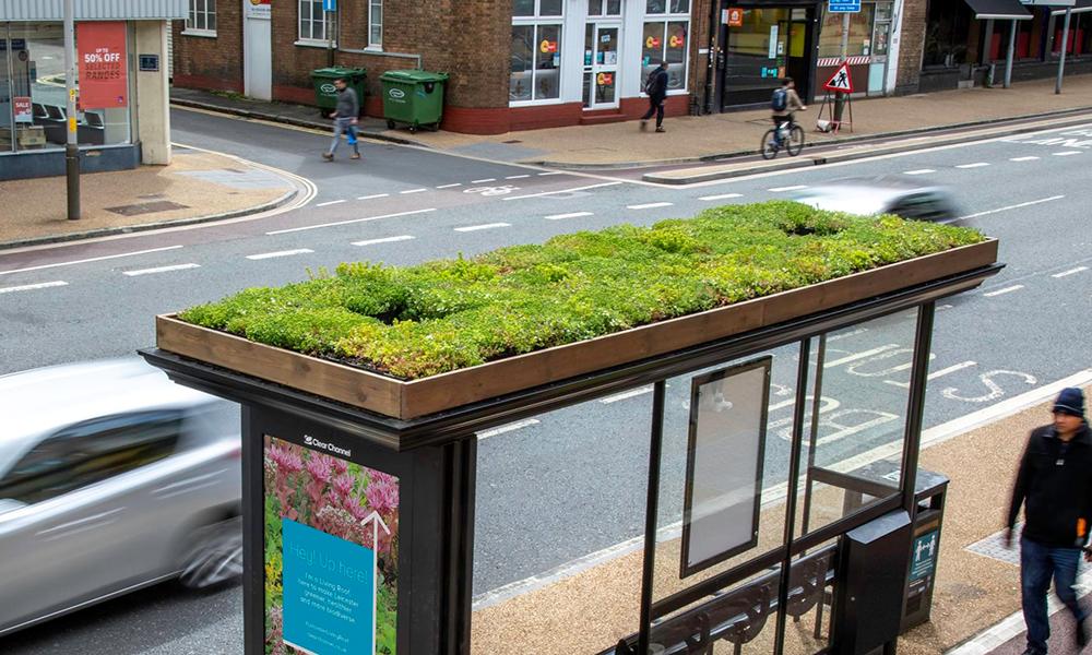 En Angleterre, ces arrêts de bus deviennent des jardins pour les abeilles