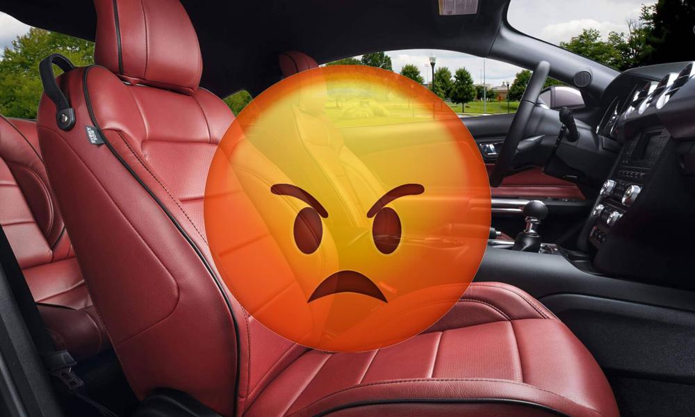 Débat : les constructeurs doivent-ils arrêter le cuir dans les voitures ?